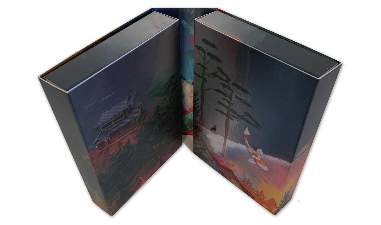 caja contenedora libros