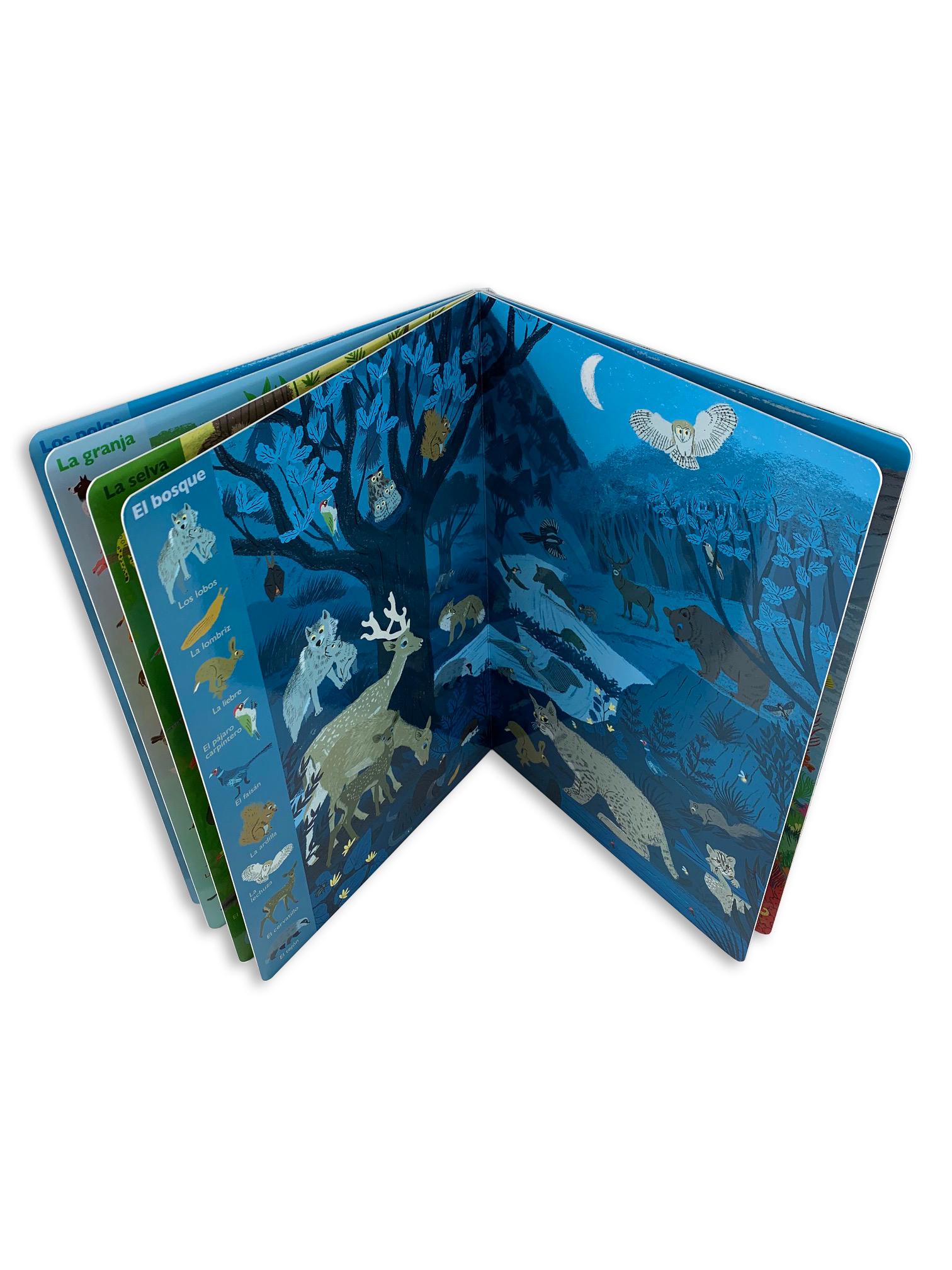 libro de cartón gran formato