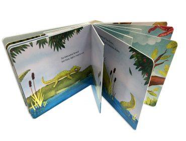 libro de cartón con páginas interiores diferentes