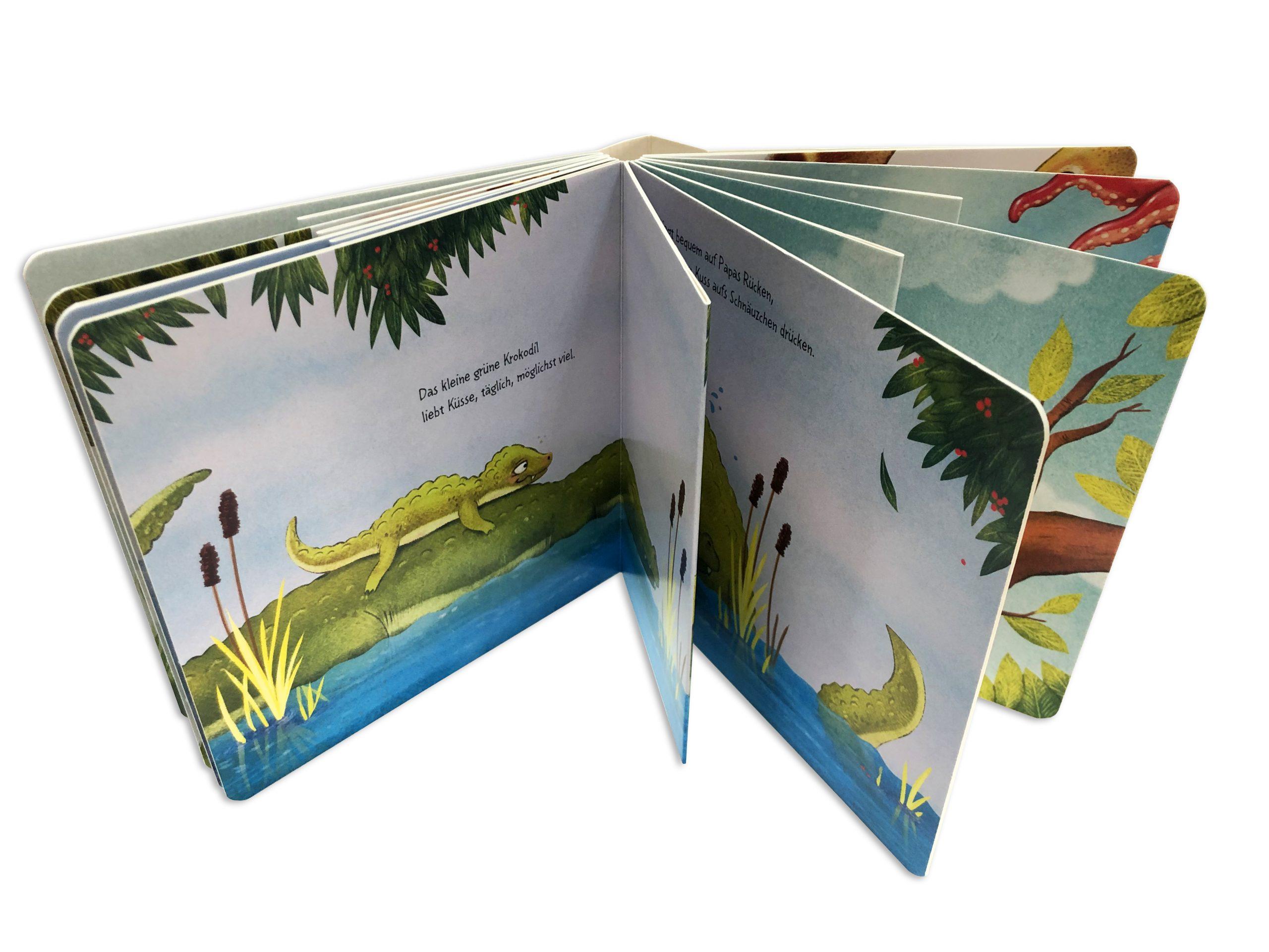 libro de cartón con páginas interiores diferentes - IMG_8298 copia