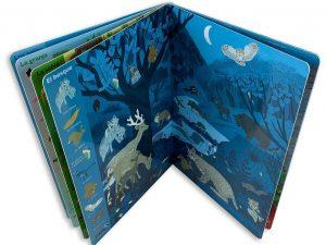 libro gigante de cartón